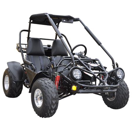 TrailMaster 150XRS go cart 150cc 2-seat 9 5HP GY6 engine - HH